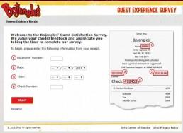 Screenshot Of Bojangleslistens Survey 1