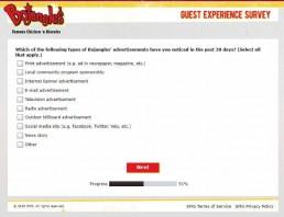 Screenshot Of Bojangleslistens Survey 9