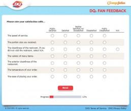 Screenshot Of Dqfanfeedback Survey 2