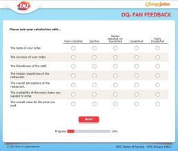 Screenshot Of Dqfanfeedback Survey 3