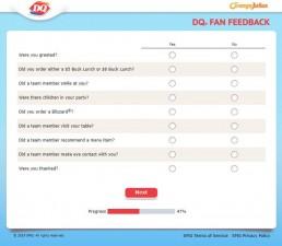 Screenshot Of Dqfanfeedback Survey 6
