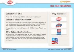 Screenshot Of Dqfanfeedback Survey 7