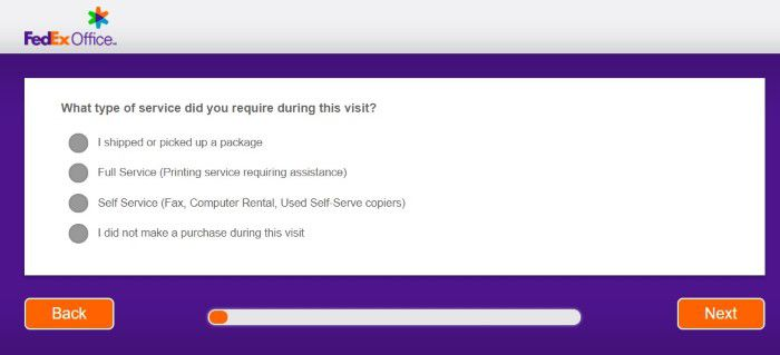 Screenshot Of Fedex Welisten Survey 2