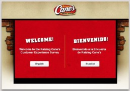 Screenshot Of Raising Cane's Survey 1