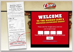 Screenshot Of Raising Cane's Survey 2
