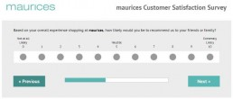 Screenshot Of Tellmaurices Survey 2