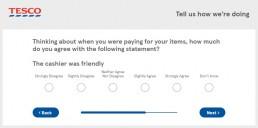 Screenshot Of Tescoviews Survey 7