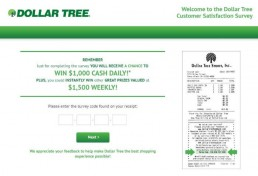 Screenshot Of Official Dollartreefeedback Survey
